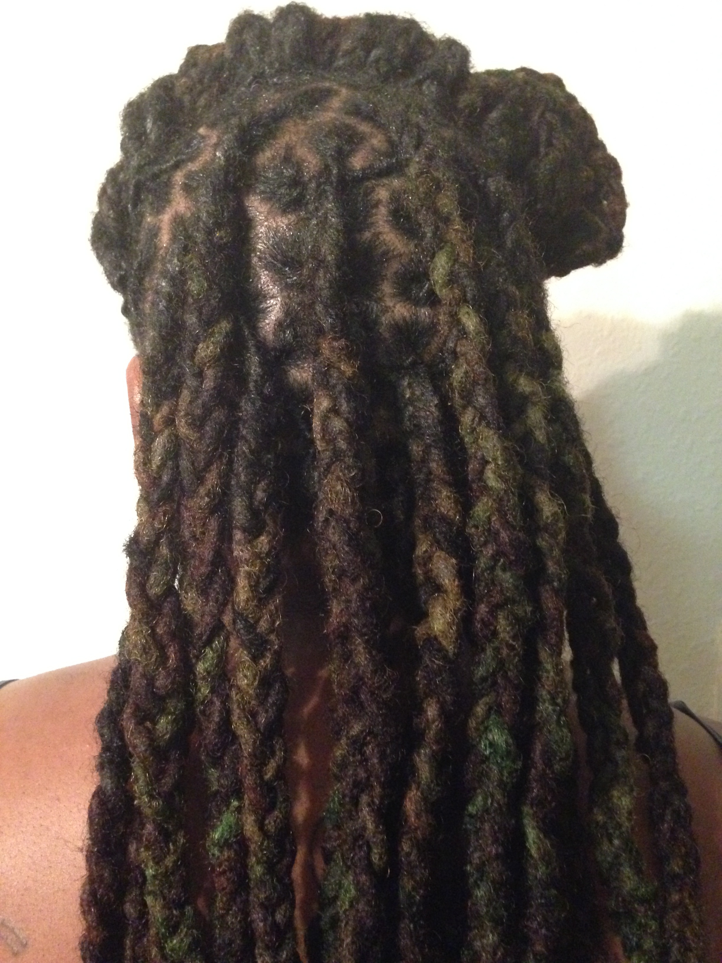 Braided Half Updo with locs